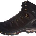 Salomon Quest 4d 3 GTX Hiking Boots