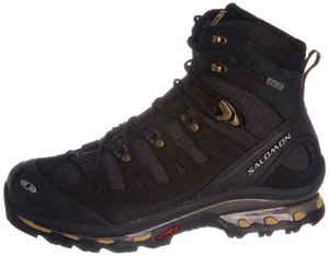 Salomon Quest 4D Gtx Walking Boots